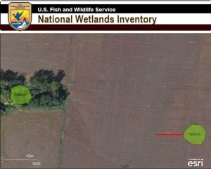 wetlands on nwi map